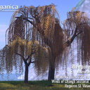 [ Organica ] Weeping Willow 3 - Animesh Trees