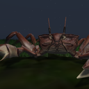 [ Wilds of Organica ] Giant Ghost Crabs arrive at Fantasy Faire!